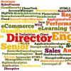 Priority-Jobs-Redfish-Technology-Wordle