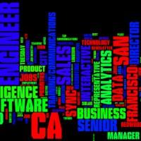2013-08-13-Priority-Jobs-Wordle
