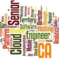 2013-10-08-Priority-Jobs-Wordle