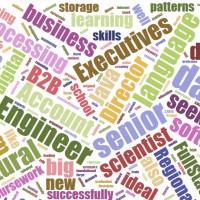 2015-7-28-Redfish-Tech-Jobs