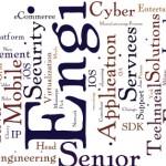 2013-03-26-Job-Wordle