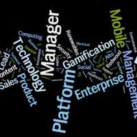2013-07-23-Priority-Jobs-Wordle