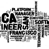 2013-07-30-Priority-Jobs-Wordle