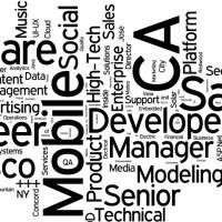 2013-09-10-Priority-Jobs-Wordle