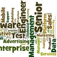2013-10-22-Priority-Jobs-Wordle