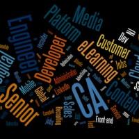2013-11-19-Priority-Jobs-Wordle