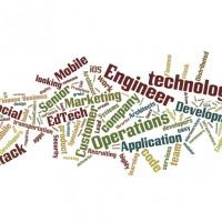 2015-2-10-Redfish-Tech-Jobs