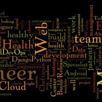 2015-6-9-Redfish-Tech-Jobs